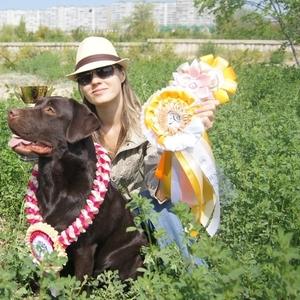 Продаются породистые щенки лабрадора ретривера черного цвета с родословной